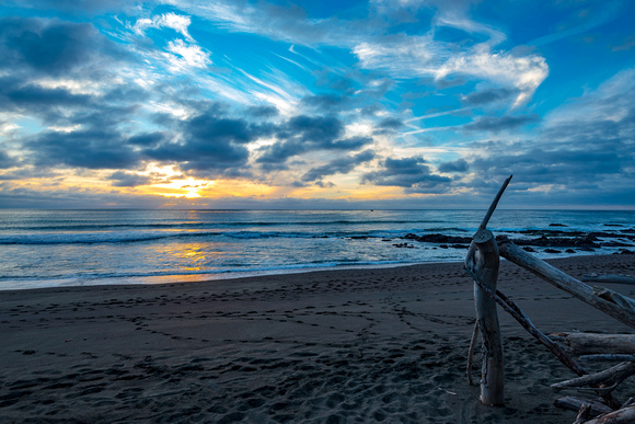 Cambria Driftwood Sunset